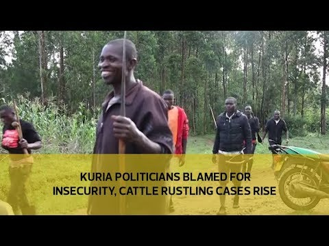 Kuria politicians blamed for insecurity, cattle rustling cases rise