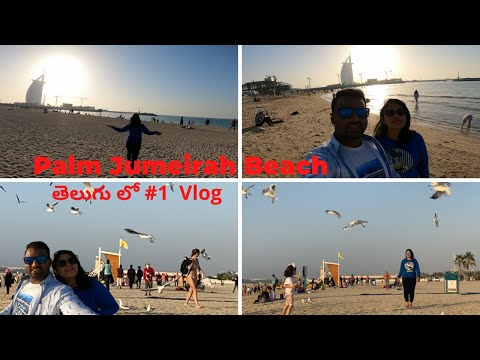 Palm Jumeirah Beach | Palm Jumeirah Public Beach | Burj Al Arab | 7 Star Hotel Dubai | DubaiDiaries