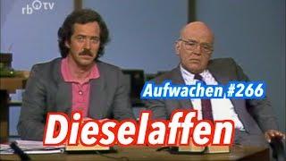 Aufwachen #266: Grüne Erneuerung, Hans Jessen Show 1987 & SPD vs. CDU