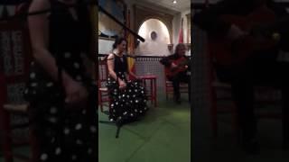Cantante flamenco