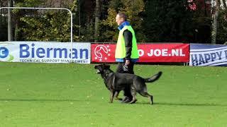 Interland 2017 Ivan Coymans  Wepi Jopi Me   Protection 82P