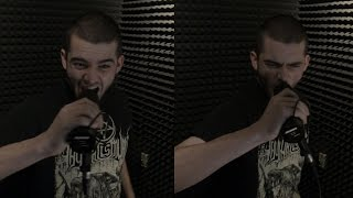Killswitch Engage - It Falls On Me (Vocal Cover)