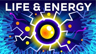 Why Are You Alive - Life, Energy & ATP