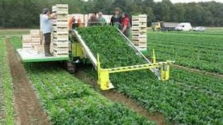 Amazing agriculture technology, modern harvest machine, modern agriculture compilation 2016 #part13