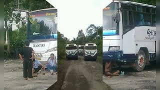 De'Fama Trio - 1000 Taon (Cip: Mangara T.Manik) Cover foto Bus Sejahtera Transindo