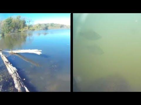 Underwater Episode 26: Lake Shabbona State Park (site20/location2)
