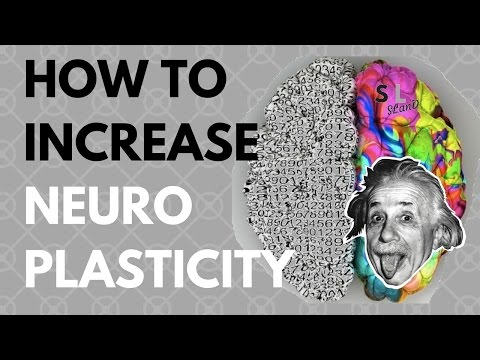 How to Increase Neuroplasticity (6 Neuroplasticity Exercises)