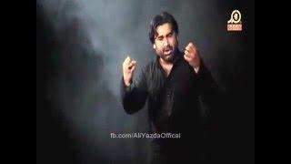 Main Aa Gaye Bhaiya - Ali Yazdan Rizvi - Nohay 2015-16