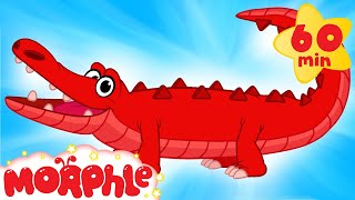 My Pet Crocodile - (Learn About Real & Pretend) + 1 hour My Magic Pet Morphle compilation for kids!