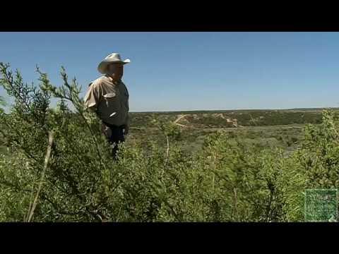Matador Ranch Lone Star Land Steward - Texas Parks and Wildlife [Official]