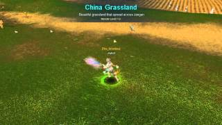 the bots of silkroad online