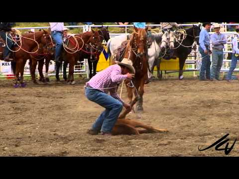 2015 Calgary Stampede Over - Attendance Down, 4 Horses Killed -  YouTube