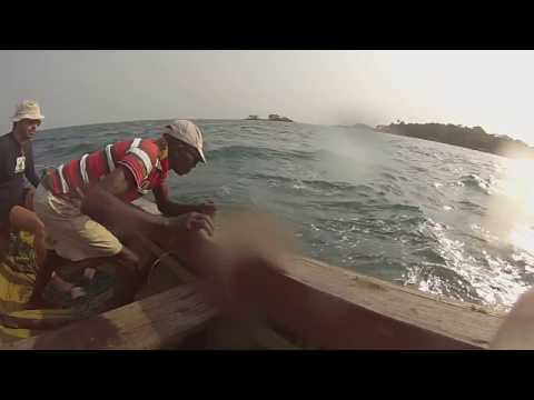 Sport Fishing in Sierra Leone West Africa