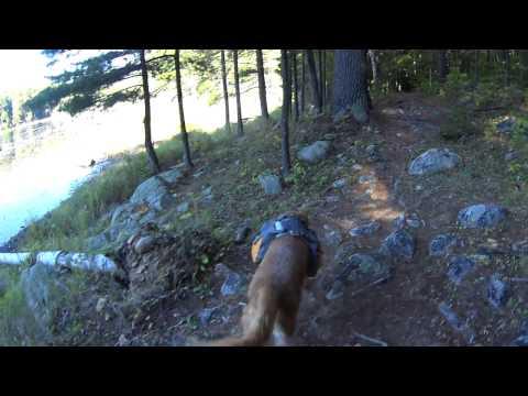 Pharaoh Lake Wilderness Part 3 - Backpacking Adirondack State Park