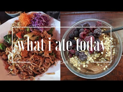 WHAT I ATE TODAY AS A VEGAN
