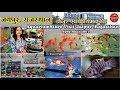 Aquarium fish shop Jaipur   Jaipur Aquarium Store visit #wholseller in Jaipur