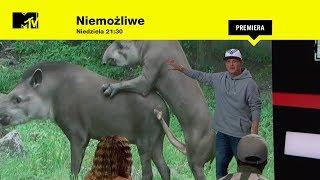 Niemożliwe s01 w18 I Miłość fizyczna zwierząt