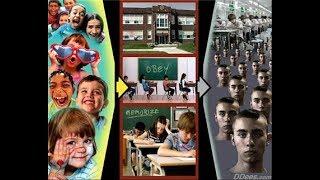Hirnforschung BESTÄTIGT  Schulsystem VERDUMMT das Gehirn unserer Kinder