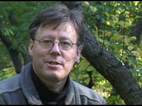 David Allen Sibley on The Sibley Guide to Trees