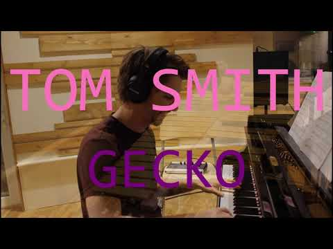 Gecko - Tom Smith Album Trailer