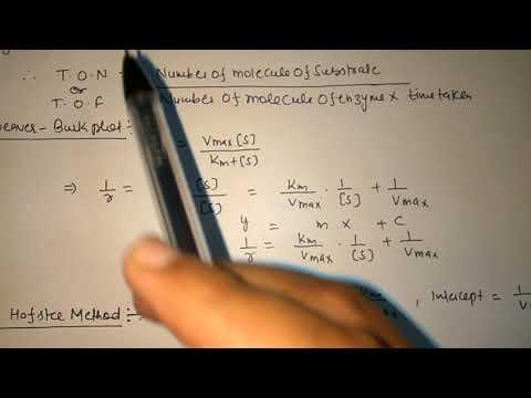 Kinetics Of Enzyme Catalyst Mentene Equation