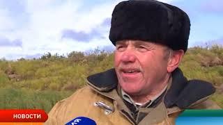 Ненецкие рыбаки продолжают ловить семгу без лицензий