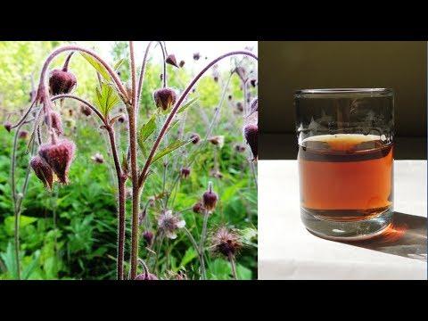 Целебная настойка из цветков сирени и мервы (наружно!) - YouTube