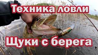 Техника Ловли Щуки на спиннинг с берега Спиннинг для начинающих 100 Удачная Рыбалка на щуку