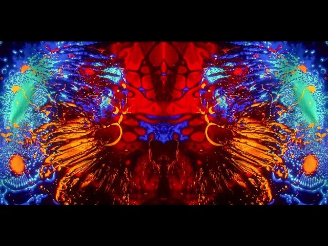 David Franz - Tree Pose (Mad Alchemy Visualizer)