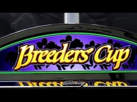 Breeders cup casino horse racing game gambling workplace