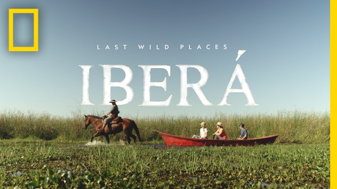 Last Wild Places: Iberá | National Geographic