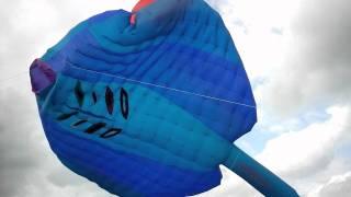 Bristol kite festival - Mega ray kite 2011.