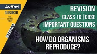 How do organisms reproduce? | CBSE Class 10 Revision & Important Questions