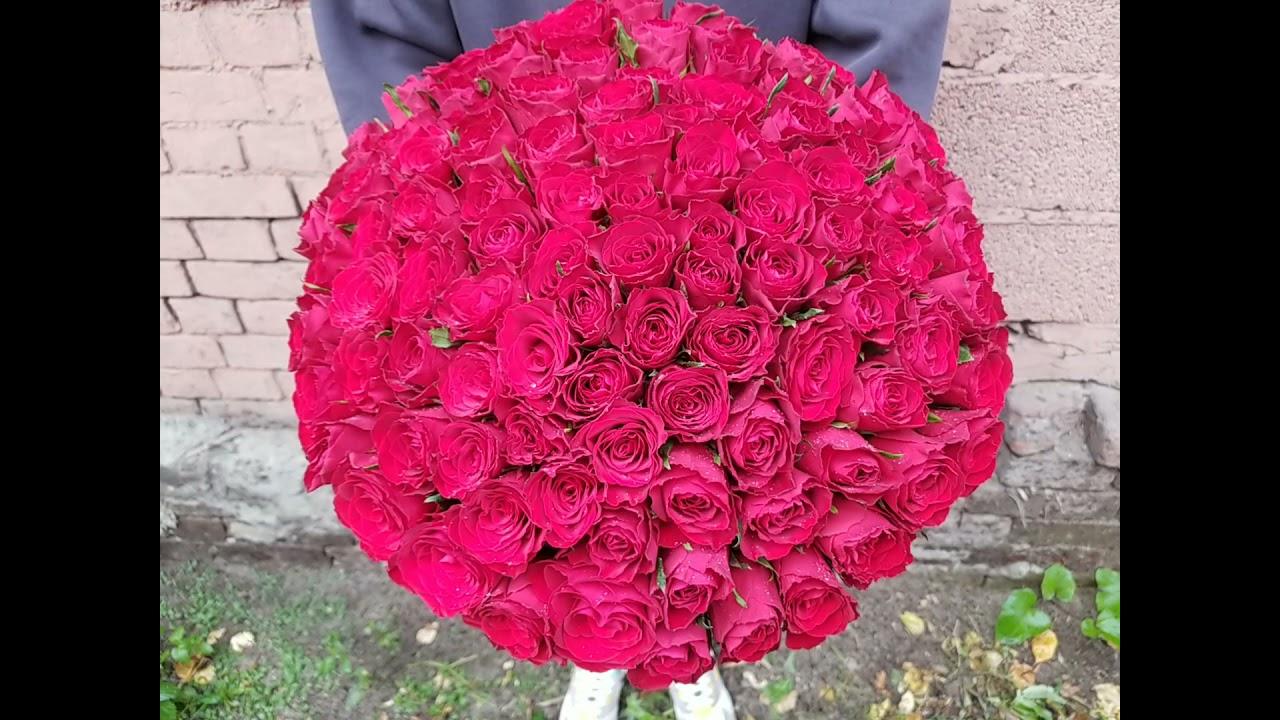 101 красная роза 40 см Кения