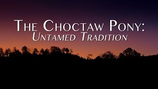 The Choctaw Pony: Untamed Tradition