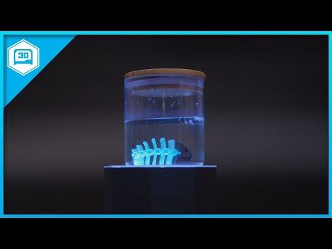 Robot Fish #3DPrinting #MakeCode #Adafruit
