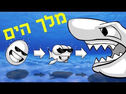 לאכול ולגדול ◄ כריש!!!