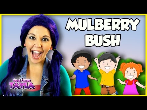 Here We Go Round the Mulberry Bush   Nursery Rhyme and Kids Song for Children on Tea Time with Tayla