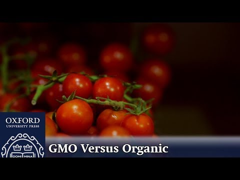 GMO Versus Organic: Which Environmental Toxins Impact our Food?