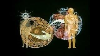 Глобальный разум - докум. фильм (1983)
