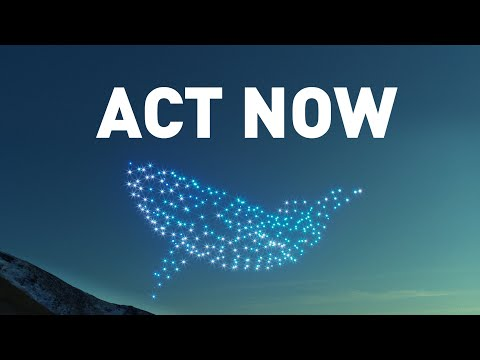 300 drones, 1 message: Act Now