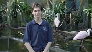 The Florida Aquarium S.E.A League - MYC MOJO