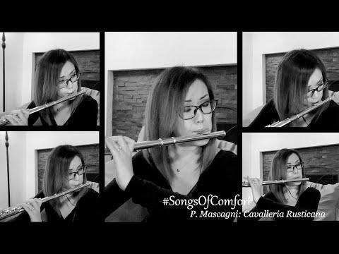 #SongsOfComfort: Cavalleria Rusticana by P. Mascagni