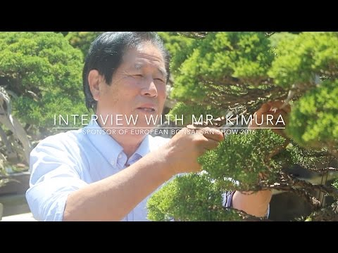 Interview with Bonsai master Masahiko Kimura