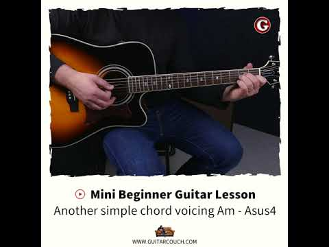 Mini Beginner Guitar Lesson Another Simple Chord Voicing Am