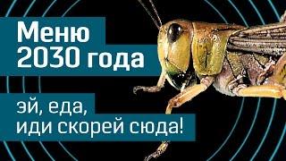 Еда будущего: меню на 2030 год - насекомые, мясо из пробирки, ГМ-продукты и синтетическая рыба