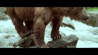 Land of the Bears / Terre des ours (3D) (2014) - Official Trailer