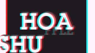 Shuffle Dance ngẫu hứng - Hoa shuffle