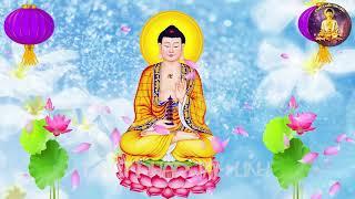 Nhạc Thiền Hòa Tấu Hay Nhất Mọi Thời Đại | Meditation music (1 HOUR)