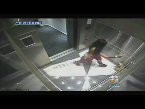 Video Shows Woman Stomping, Kicking Dog In Elevator